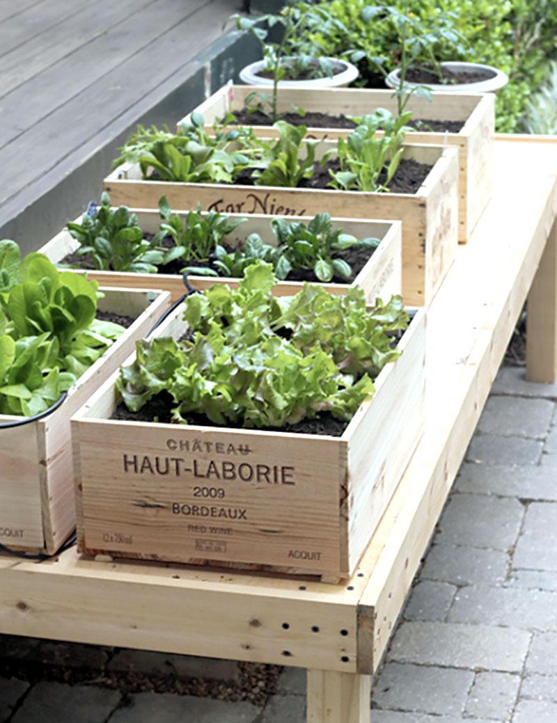Mini horta com caixotes de madeira para fazer em casa