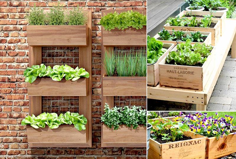 Horta urbana com caixotes na parede