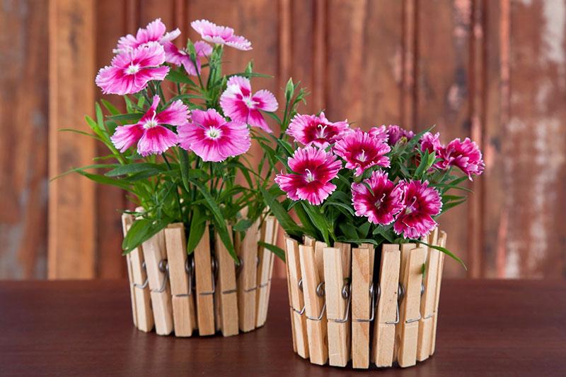 Cachepot com pregador e flores