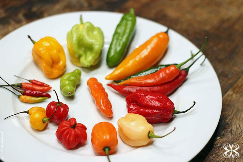Variedades de pimenta