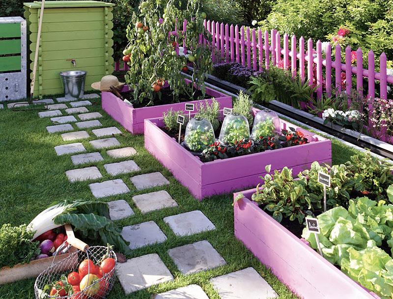 Horta no quintal de casa