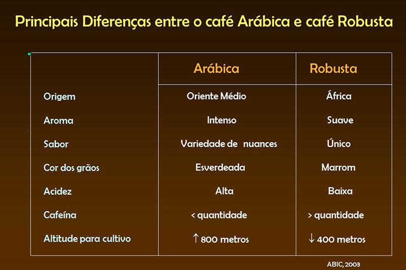 Diferenças do café Arábica e Robusta