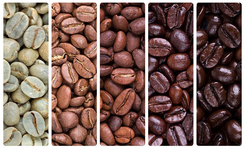 Tipos de torra do café
