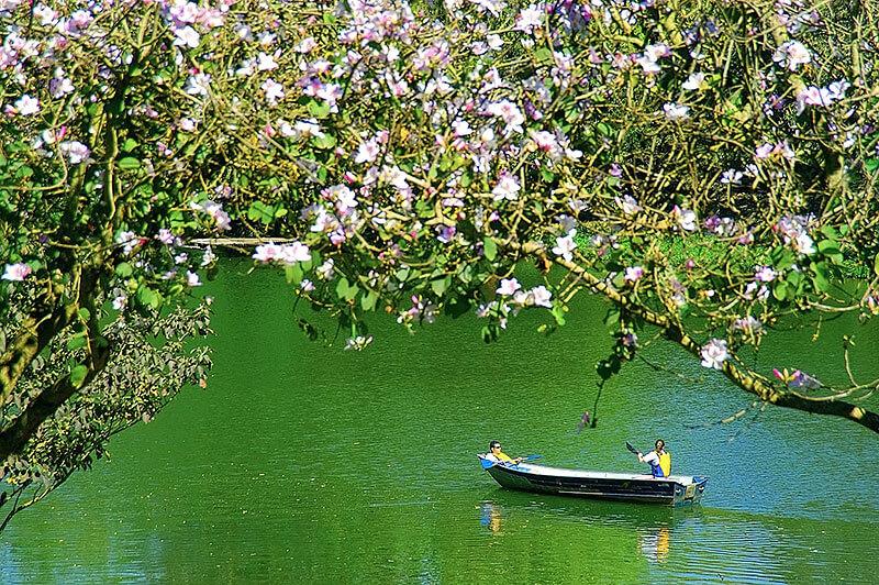 Lago no Hotel Fazenda Areia que Canta