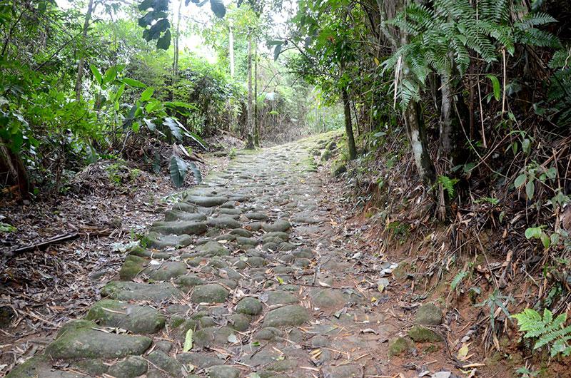 Trilha - Caminho do Ouro em Paraty
