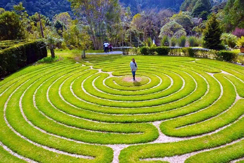 Labirintos no Parque Amantikir