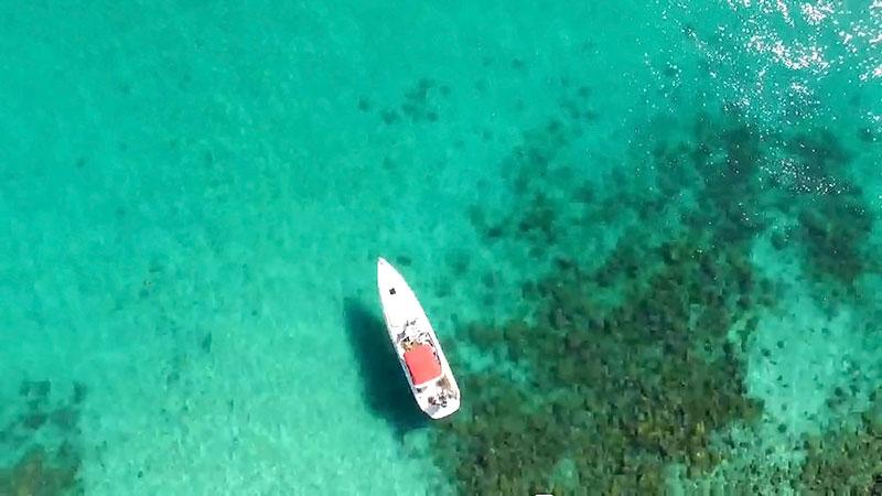 Beleza natural com água cristalina - Praia do Dentista