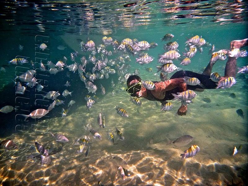 Lagoa Azul - Ilha Grande em Angra dos Reis
