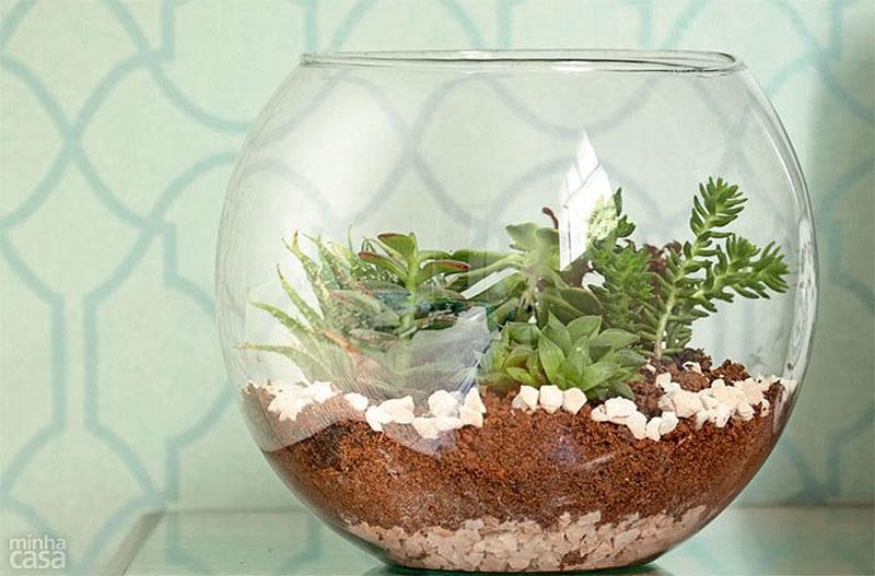 Vaso aquário para fazer Terrário