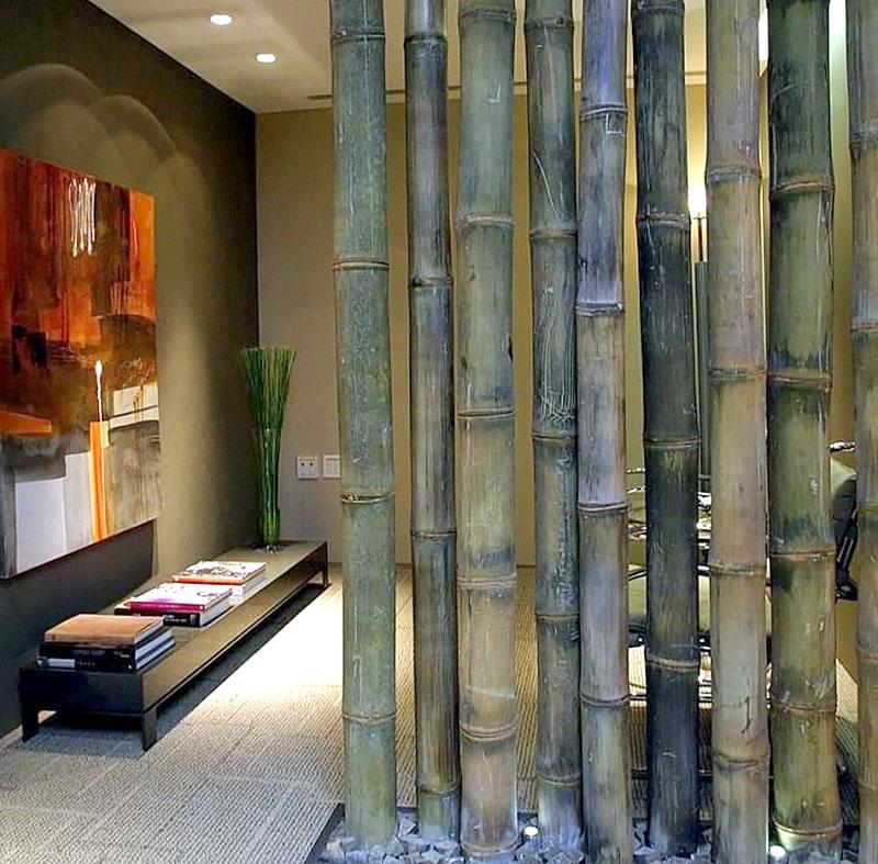Hall de Entrada com Bambu