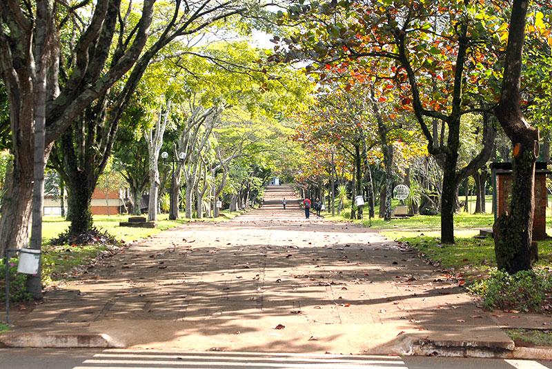 UEL - Universidade Estadual de Londrina
